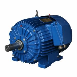 электродвигатель cantoni купить в Украине